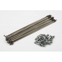 Brompton stainless steel spoke set 151mm, PG, 13g