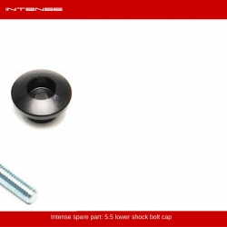 Intense 5.5 shock bolt cap